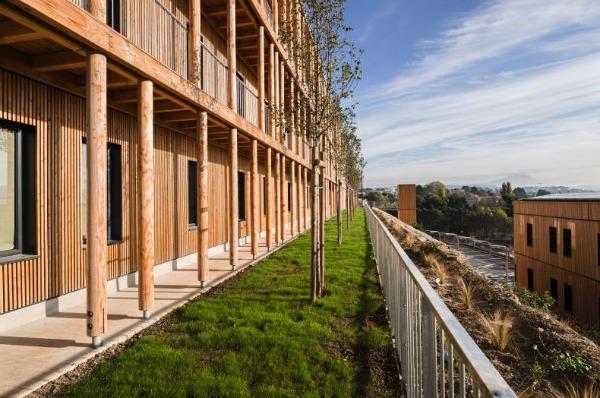 Edilizia in legno il primo complesso per uffici passivo - Immagini di uffici ...