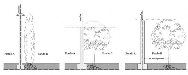 Distanze dai confini e alberi la normativa vigente for Distanza siepe dal confine