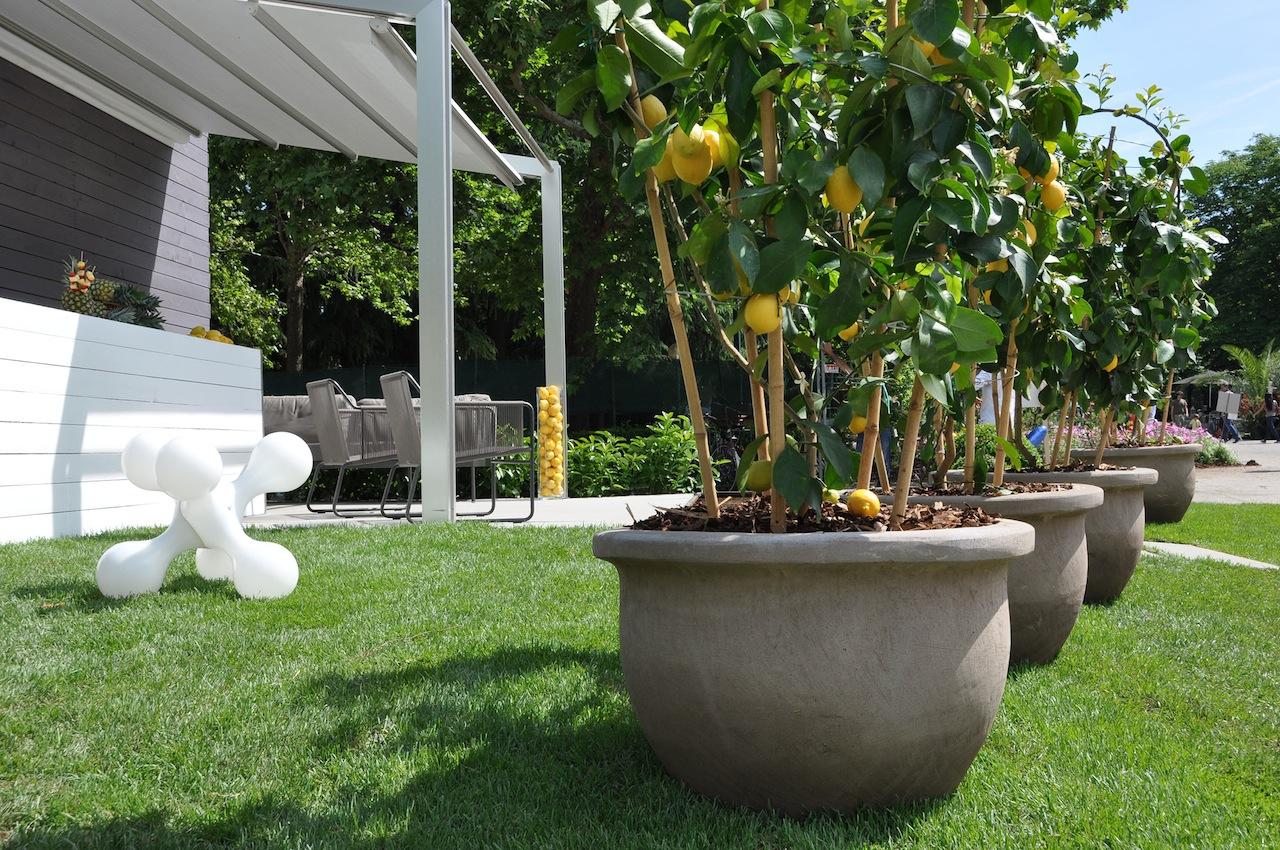 Progettazione esterni e vasi quali materiali for Vasi grandi per interni